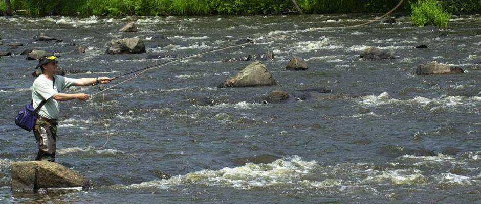Fermeture de la pêche dans un secteur de la rivièreSaint-Maurice