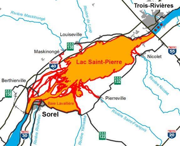 Prolongation du moratoire sur la pêche à la perchaude au lac Saint-Pierre