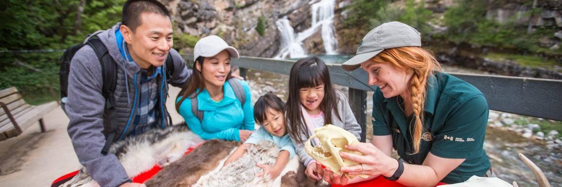 L'intégrité écologique doit être prioritaire à Parcs Canada, dit McKenna