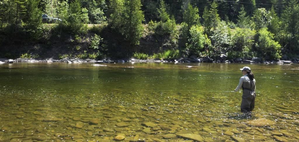 La pêche du saumon atlantique est interdite sur la rivière Jupitagon