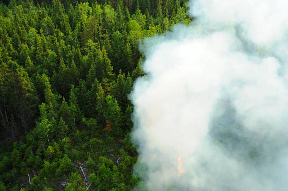 Incendies à Labrieville: interdiction d'accès en forêt et fermeture de chemins
