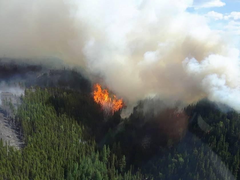 Feu de forêt sur la Côte-Nord: la SOPFEU demande l'aide du Nouveau Brunswick