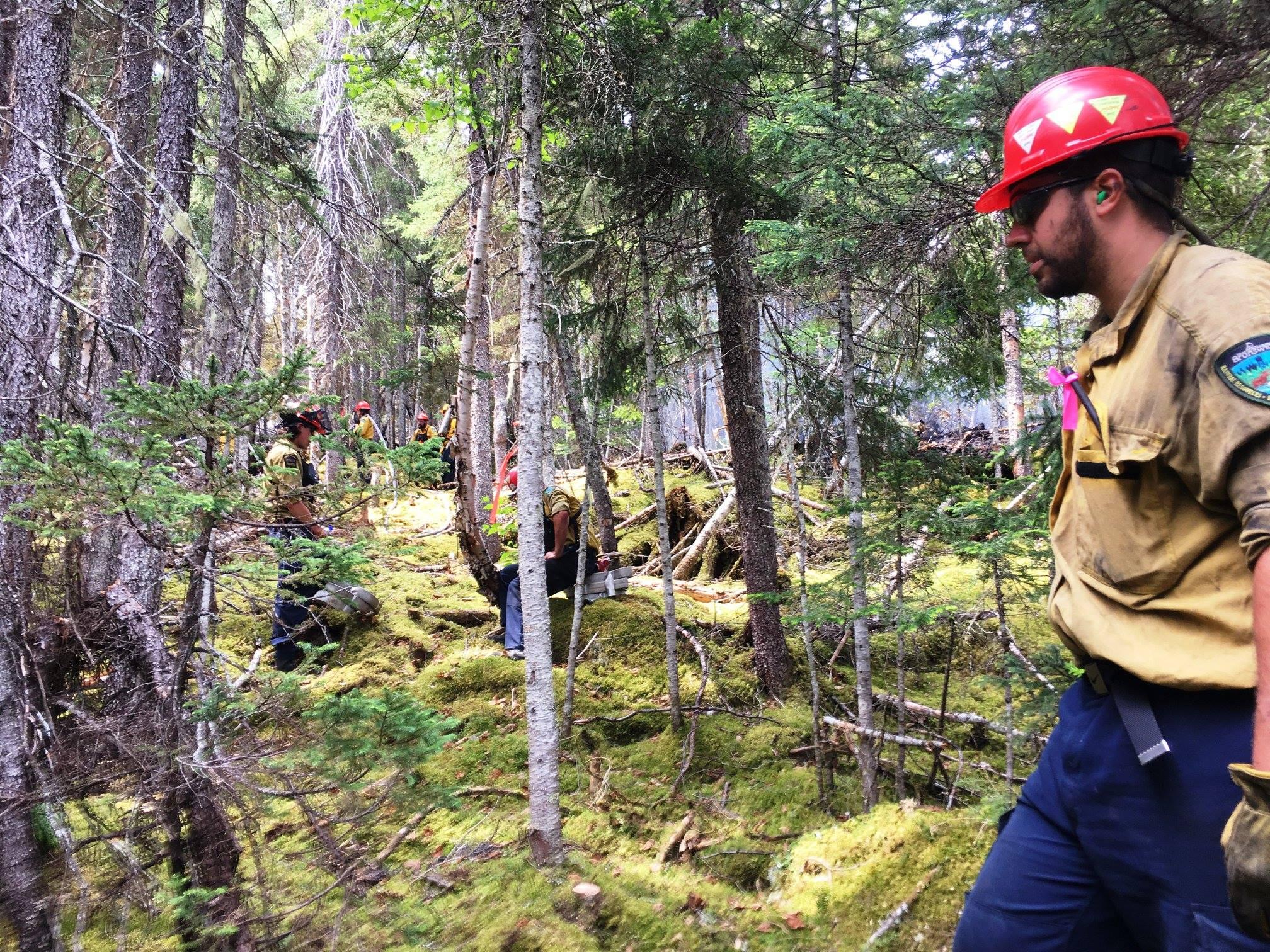 Plus de 200 pompiers en renfort des États Unis et d'ailleurs au Canada