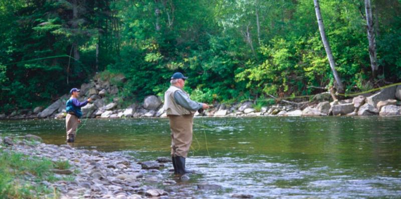 Remise à l'eau obligatoire des grands saumons dans la rivière York