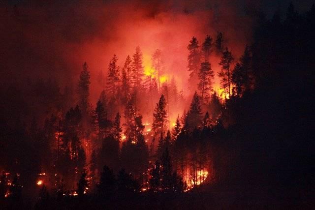 Les incendies de forêt forcent des évacuations sur l'île de Vancouver