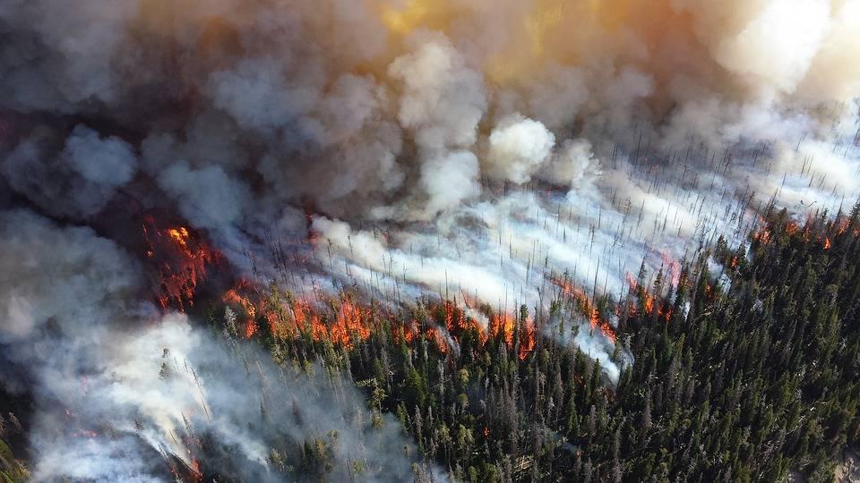 Incendies de forêt: des familles évacuées par hélicoptère en C. B.