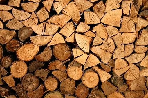 Détenir un permis pour récolter du bois de chauffage dans les forêts publiques