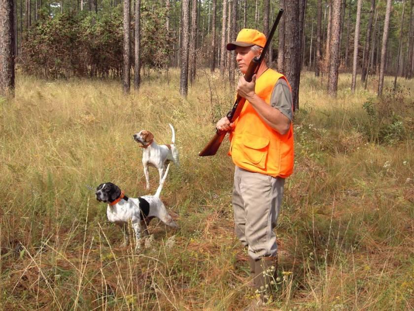 Les types d'armes à utiliser pour réussir sa chasse sportive