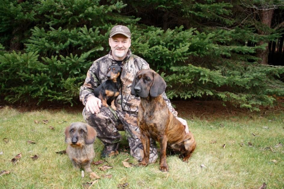 Les chiens de sang, des amis essentiels à la chasse du grand gibier