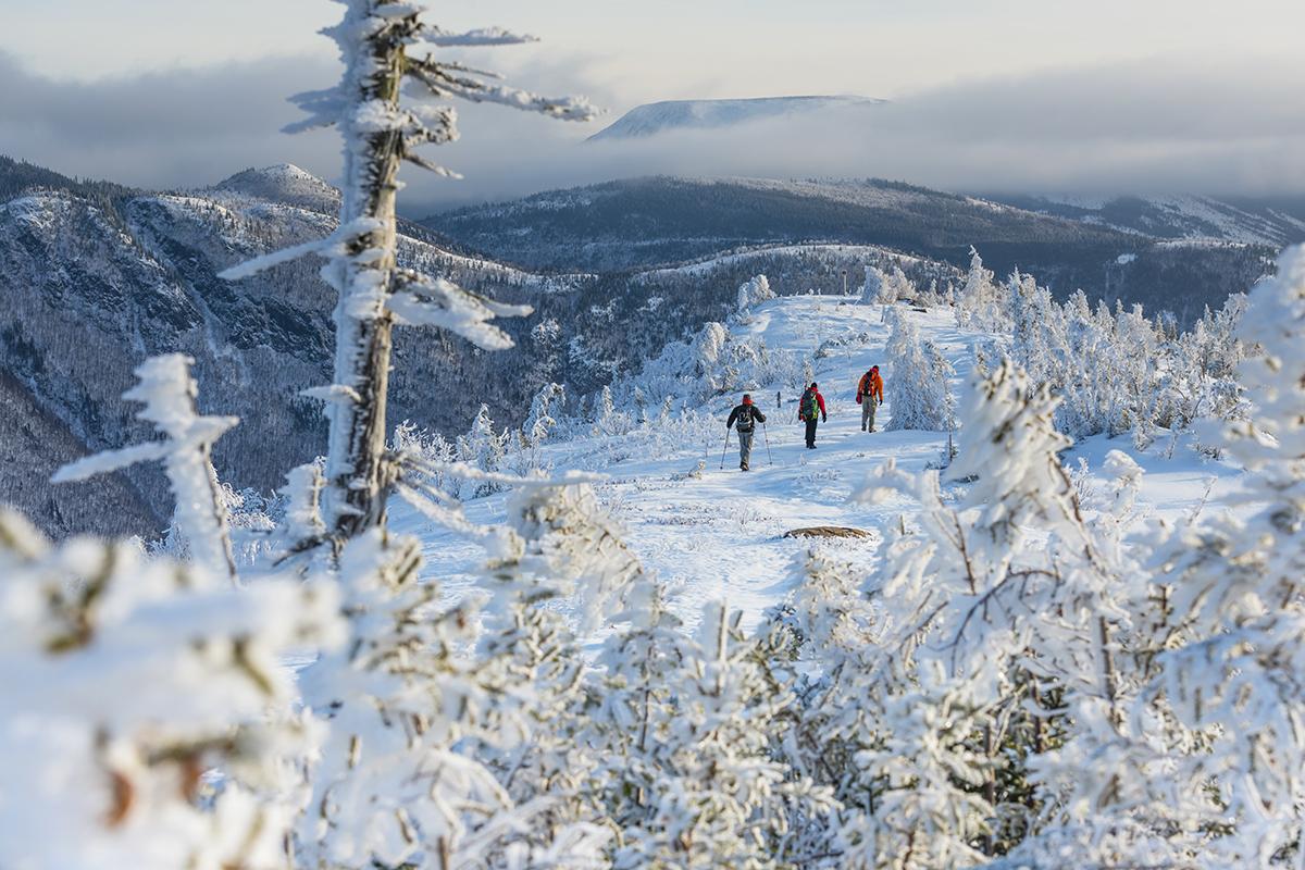 Gaspésie: jusqu'à 25 centimètres de neige tomberont mercredi jusqu'à jeudi