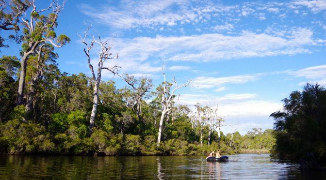 Histoire de pêche sur une rivière d'Australie