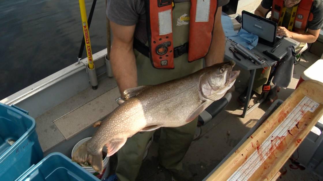 Bas-Saint-Laurent: fermeture du lac long à la pêche d'hiver