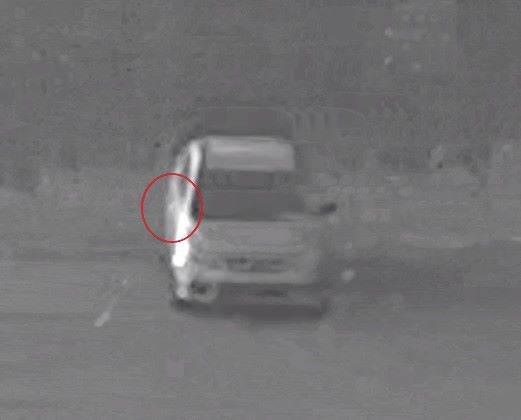 Du nouveau dans le dossier du cerf victime de braconnage au mont Jacob