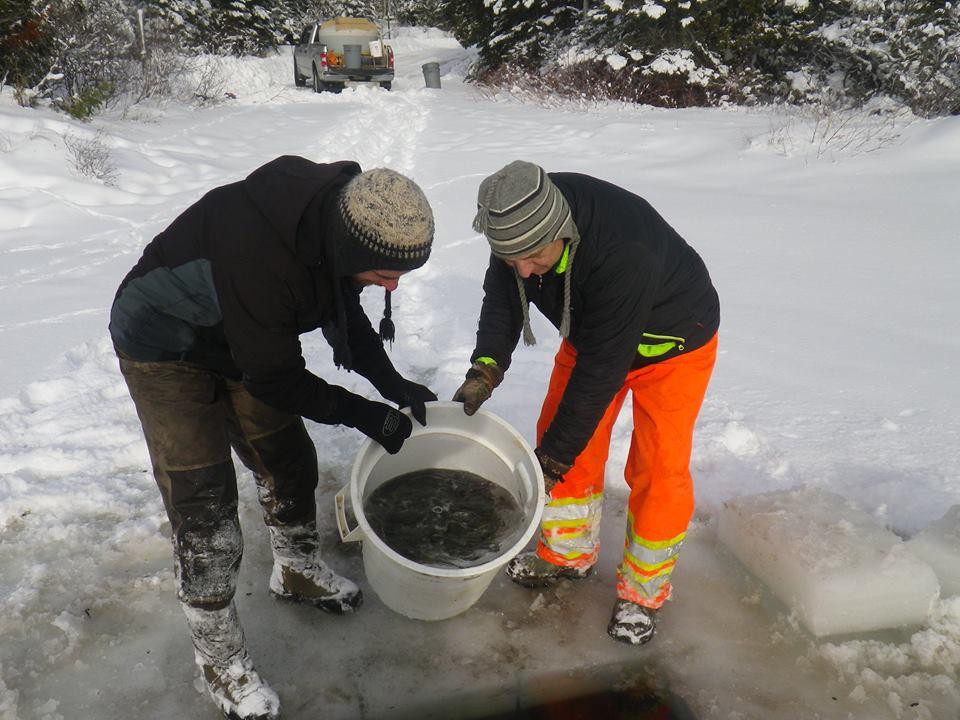 La Zec Bas-Saint-Laurent lance sa saison de pêche blanche