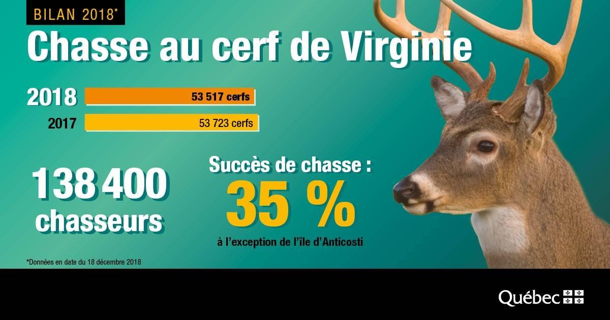 Récolte des cerfs en légère baisse mais assez dramatique dans l'Est