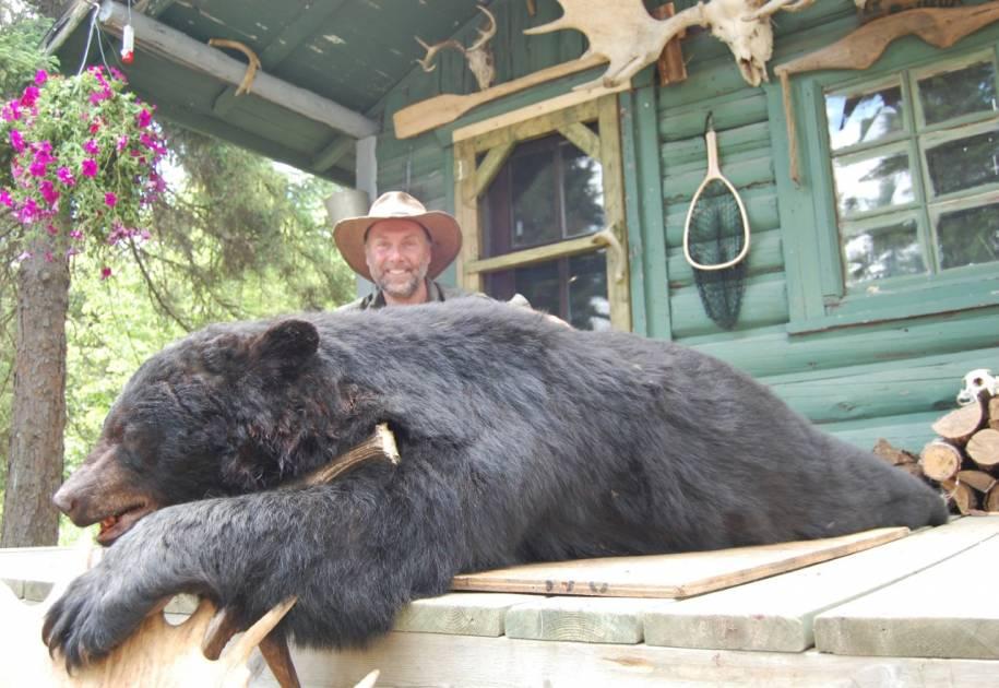 La chasse de l'ours noir bat des records et attire les femmes