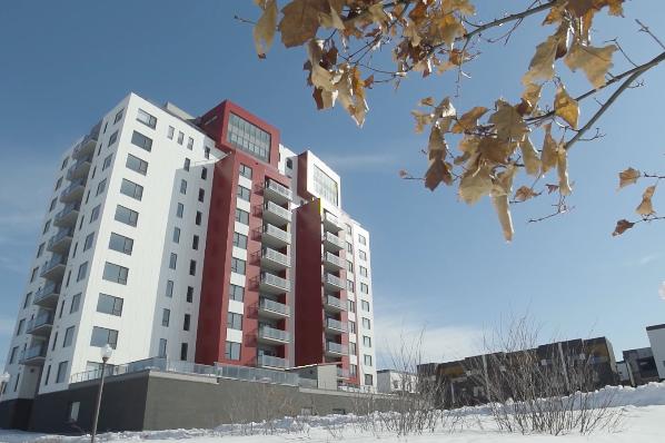 Les gratte-ciels en bois prennent racine au Canada