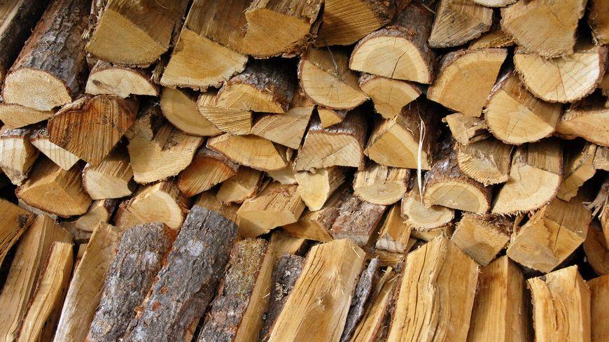 De lourdes amendes imposées pour des Infractions aux règlements forestiers
