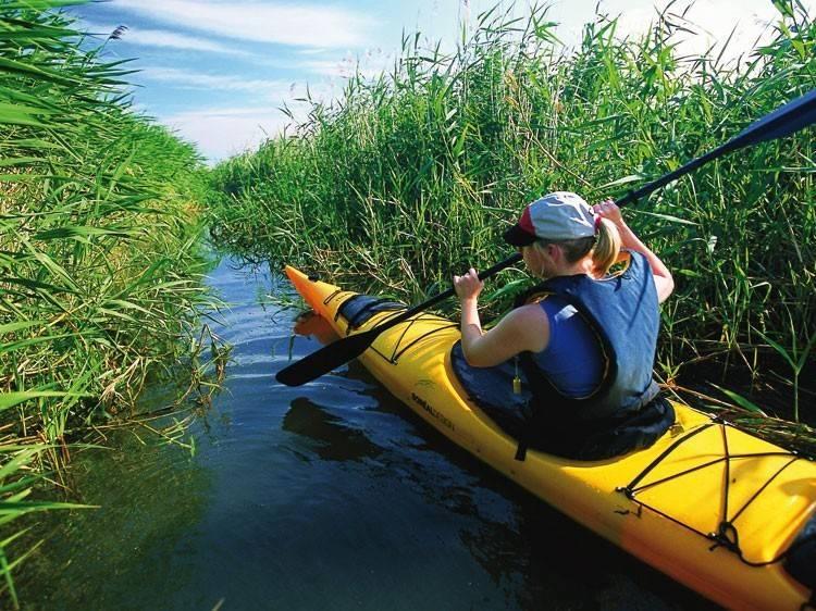 Ottawa veut protéger un chapelet d'îles du fleuve Saint Laurent