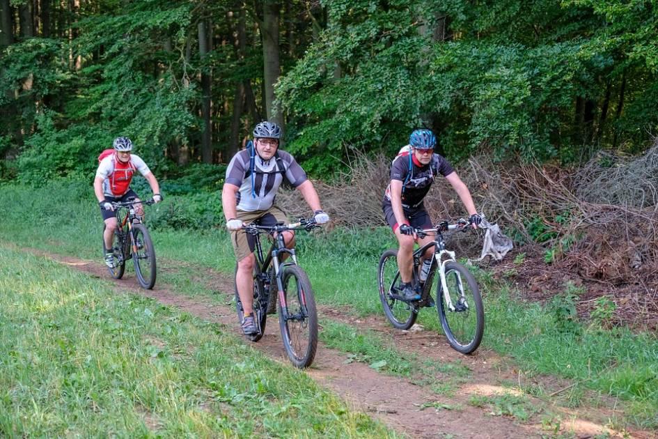 De nouvelles pistes de vélo de montagne pour la zec des Martres