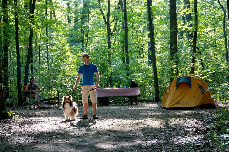 Camping et chalets : ouverture retardée en raison d'inondations