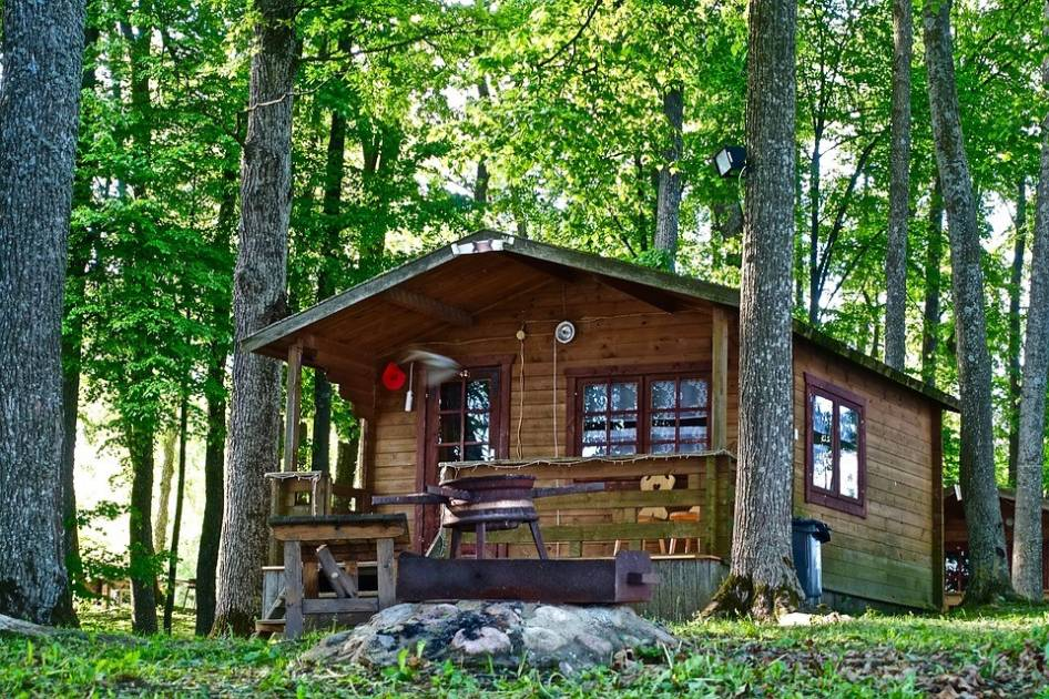 Bail de location en forêt : du rêve jusqu'à la réalité