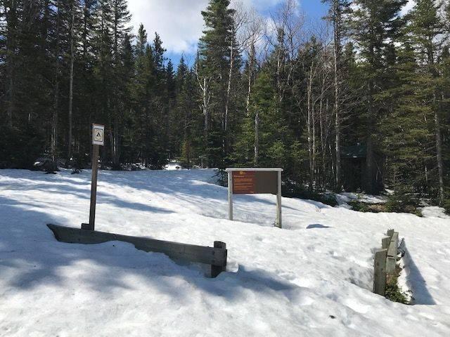 Encore de la neige dans le parc de la Gaspésie !