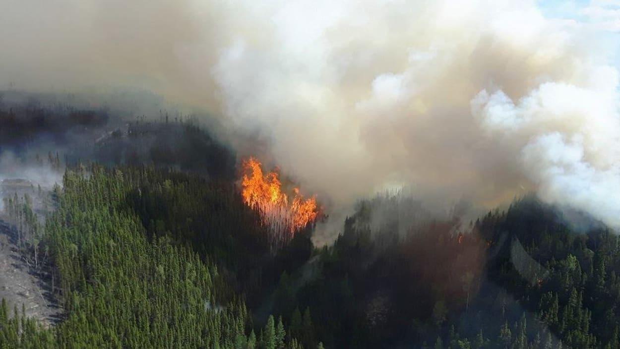 Moins de feux de forêts au Québec avec l'arrivée tardive des grandes chaleurs