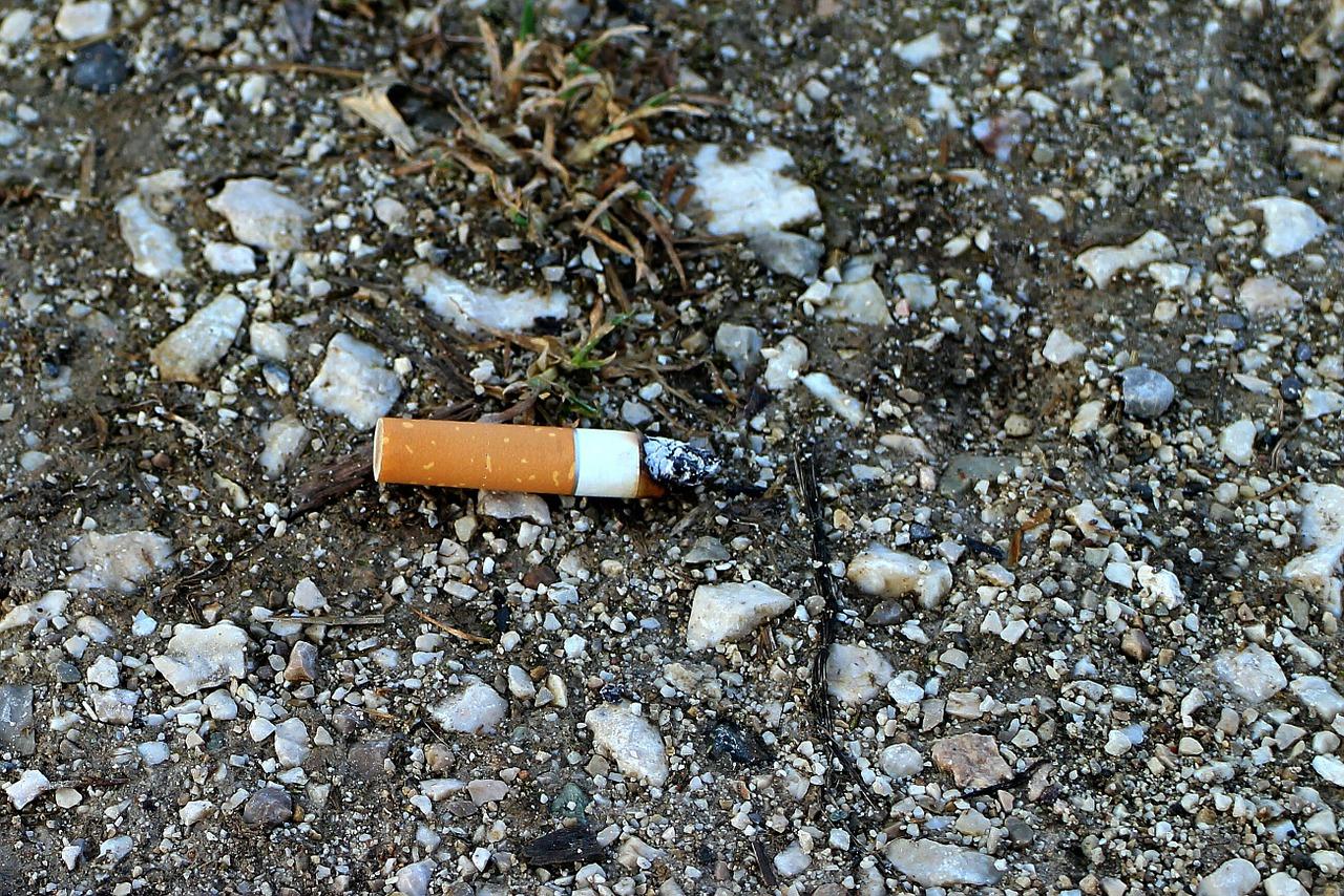 83 incendies de forêt déclenchés chaque année par des mégots de cigarette