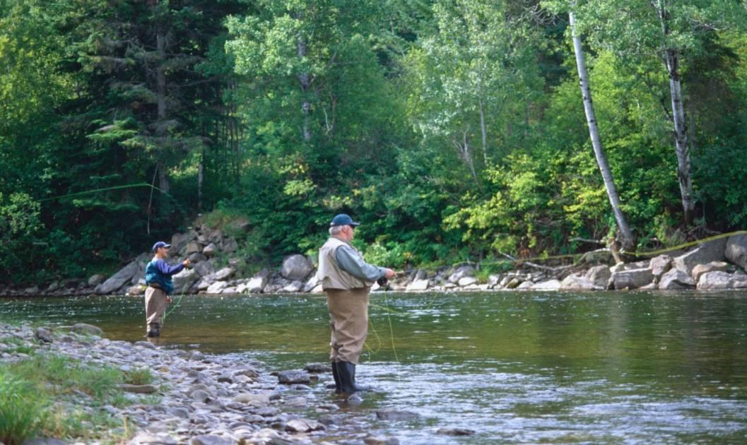 La ZEC saumon Rivière-Mitis est en sérieuses difficultées