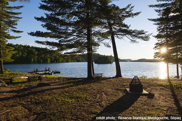 Une expérience de nature unique au camping Saint-Bernard