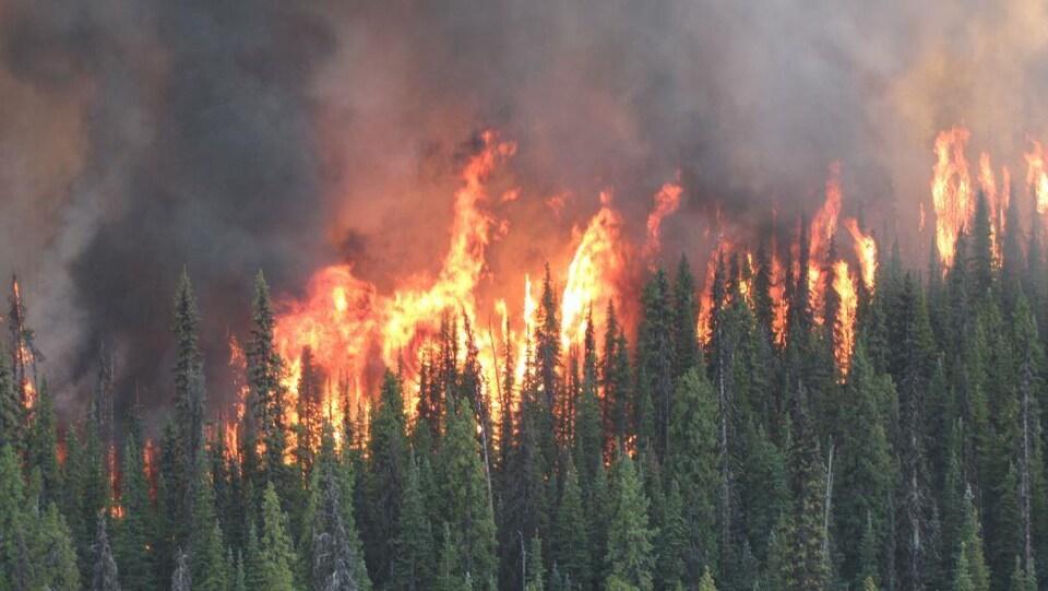 Les incendies de forêt confirment les modélisations de l'hiver nucléaire