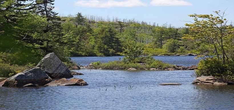Un nouveau parc naturel de 153 hectares à cinq kilomètres du centre de Halifax