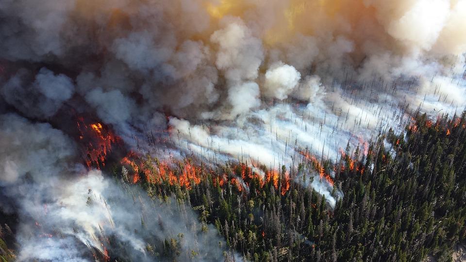 Québec: malgré le temps sec, à peine 5 incendies brûlent dans 4 régions