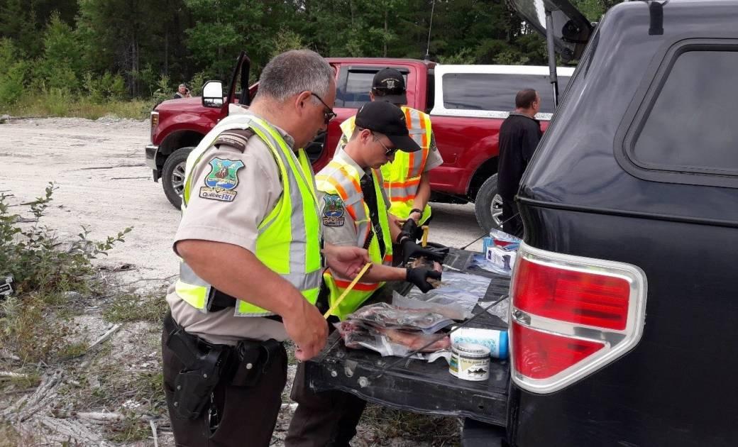 Plus de 200 véhicules inspectés par les agents de la faune de Santerre
