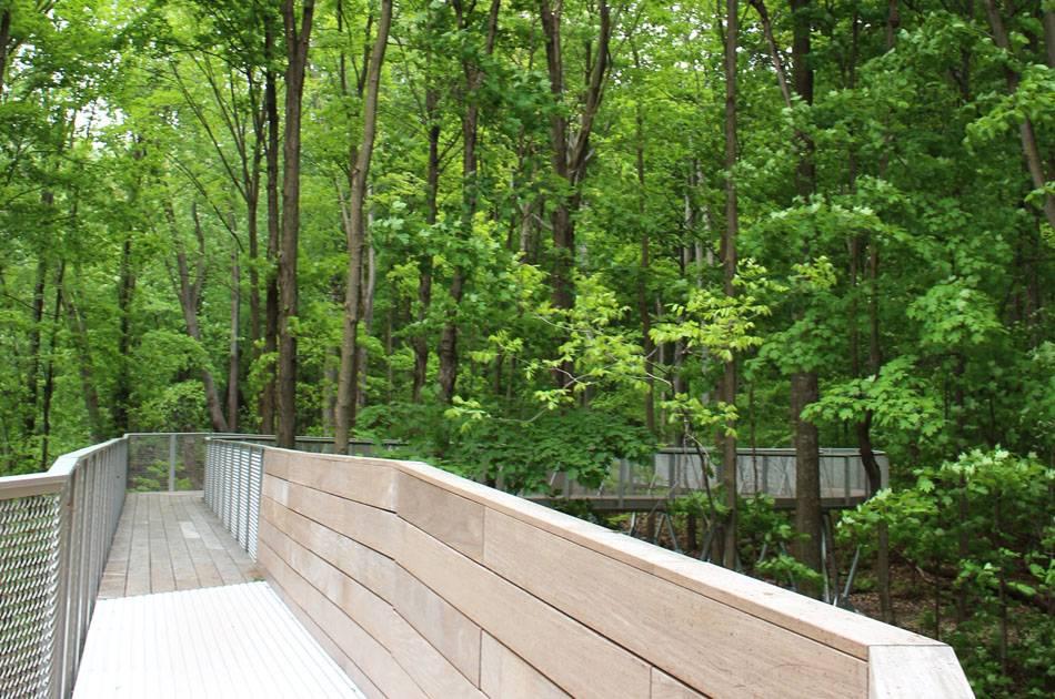 Cinq nouveaux balados du projet « Le Tour dans les parcs-nature de Montréal »
