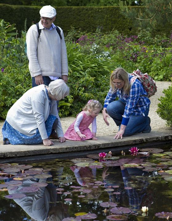 Les « Vendredis grands-parents » : pour une sortie familiale réussie