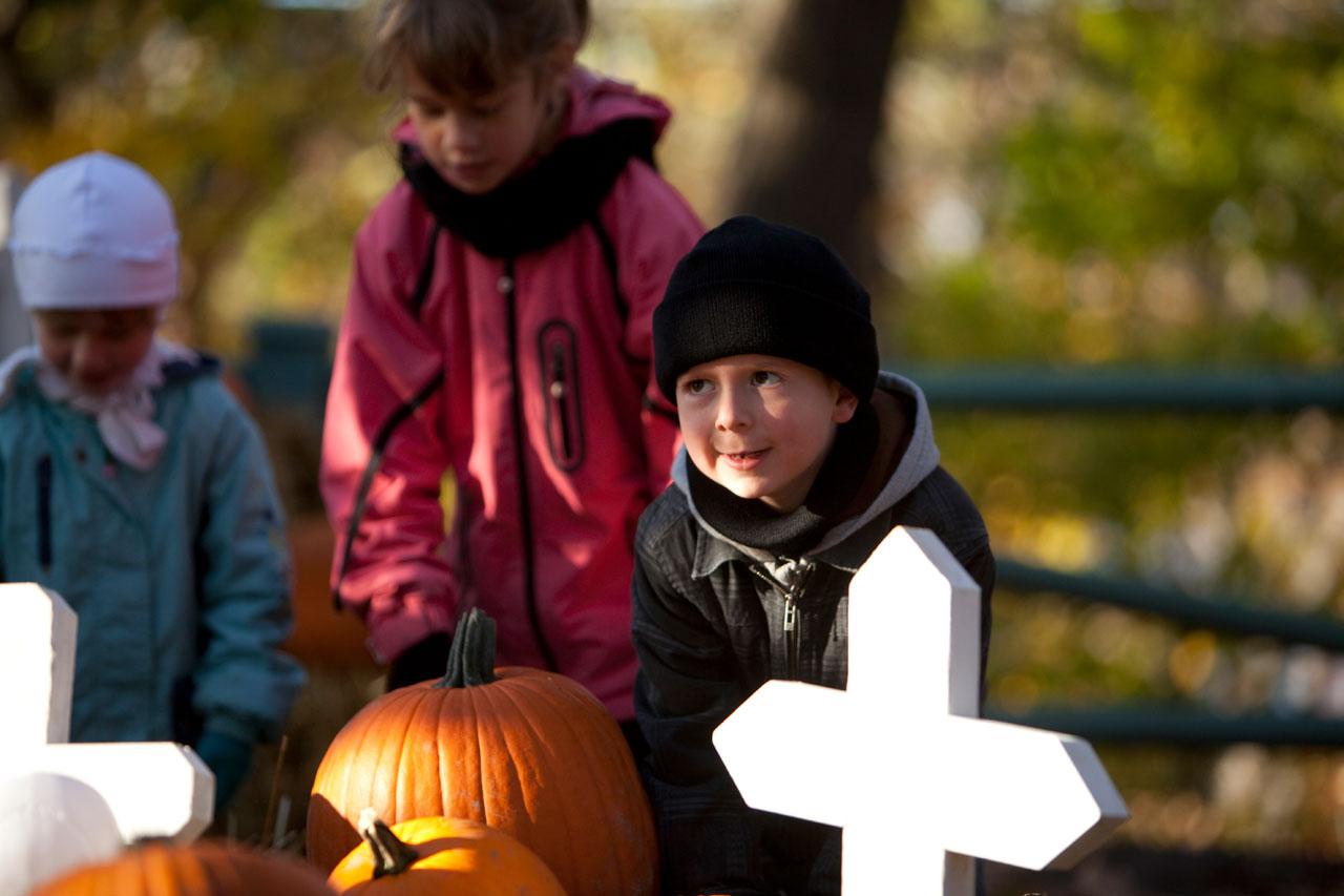 Halloween à l'Aquarium du Québec : frissons garantis pour le 31 octobre