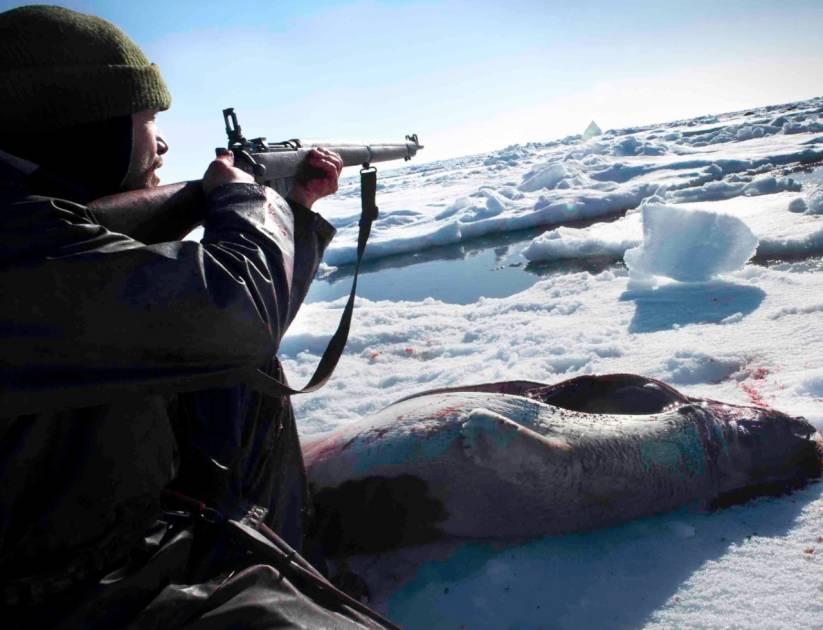 Une expérience hors de l'ordinaire s'offre aux chasseurs sportifs!