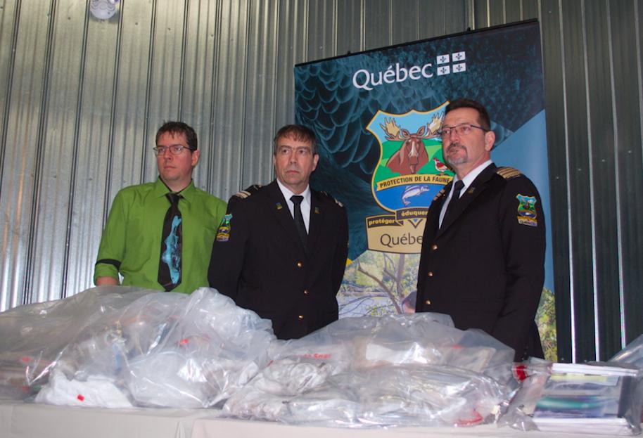 Braconnage: importante opération menée dans le Bas-Saint-Laurent