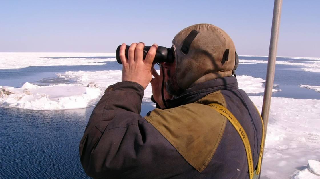 La chasse du phoque bat son plein au large des Îles-de-la-Madeleine