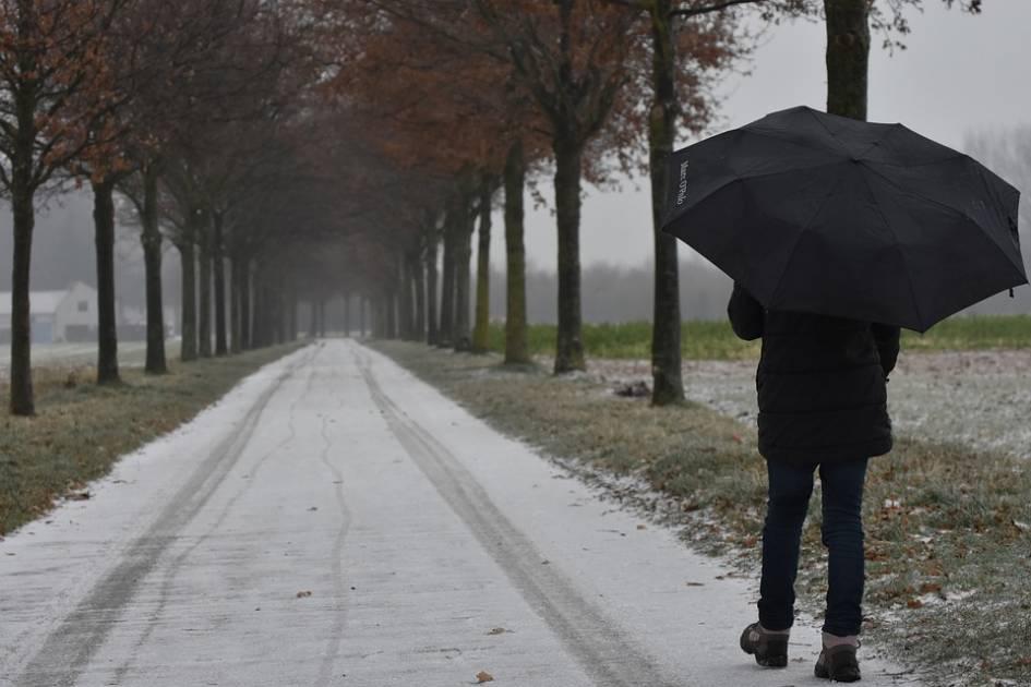 Québec et NB: jusqu'à 80 mm de pluie et vents jusqu'à 80 km à l'heure