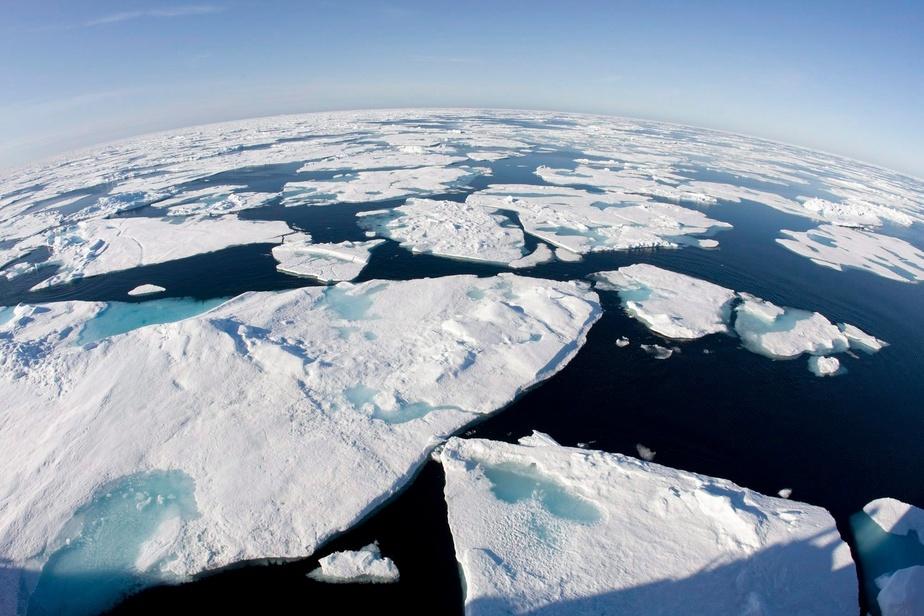 La banquise de l'océan Arctique pourrait fondre pendant l'été d'ici 2050