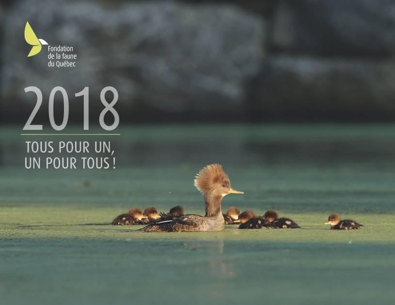 La Fondation de la faune lance son calendrier 2018