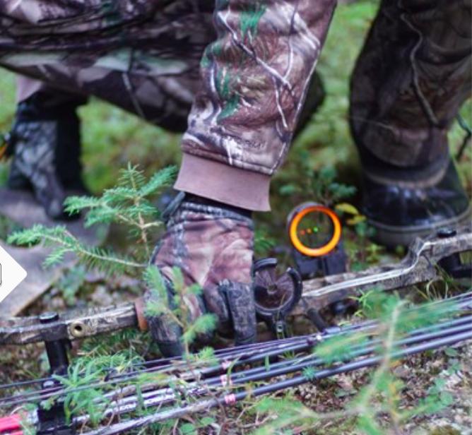 Les cours en ligne favoriseraient l'accès et la relève à la chasse!