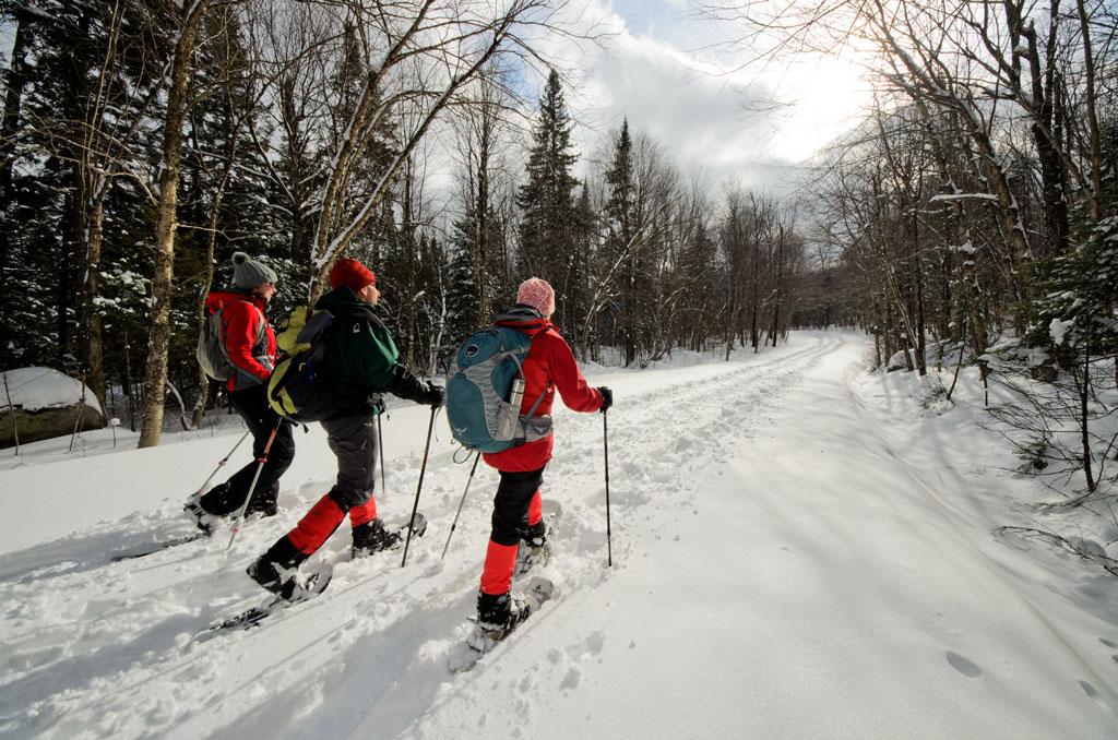Des routes d'accès du Parc du Fjord-du-Saguenay fermées