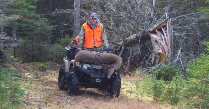Les cerfs rebondissent à Anticosti et le quotidien d'un guide de chasse