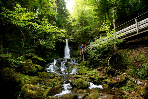 Des investissements de 8,2 M $ dans le parc national Fundy