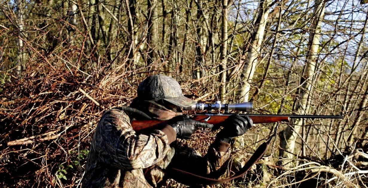 La chasse a sa place sur l'Île de Montréal