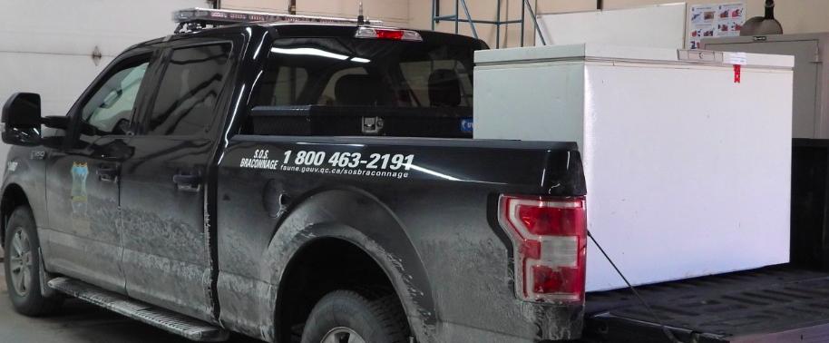 40 agents cassent un réseau de 100 braconniers en Gaspésie